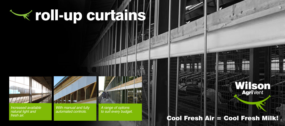 roll-up-curtains-main