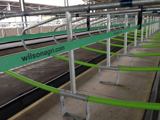 Wilson Agriculture dairy cow housing - 2015 installation - image of Cowcoon stalls